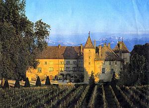 chateau310-1