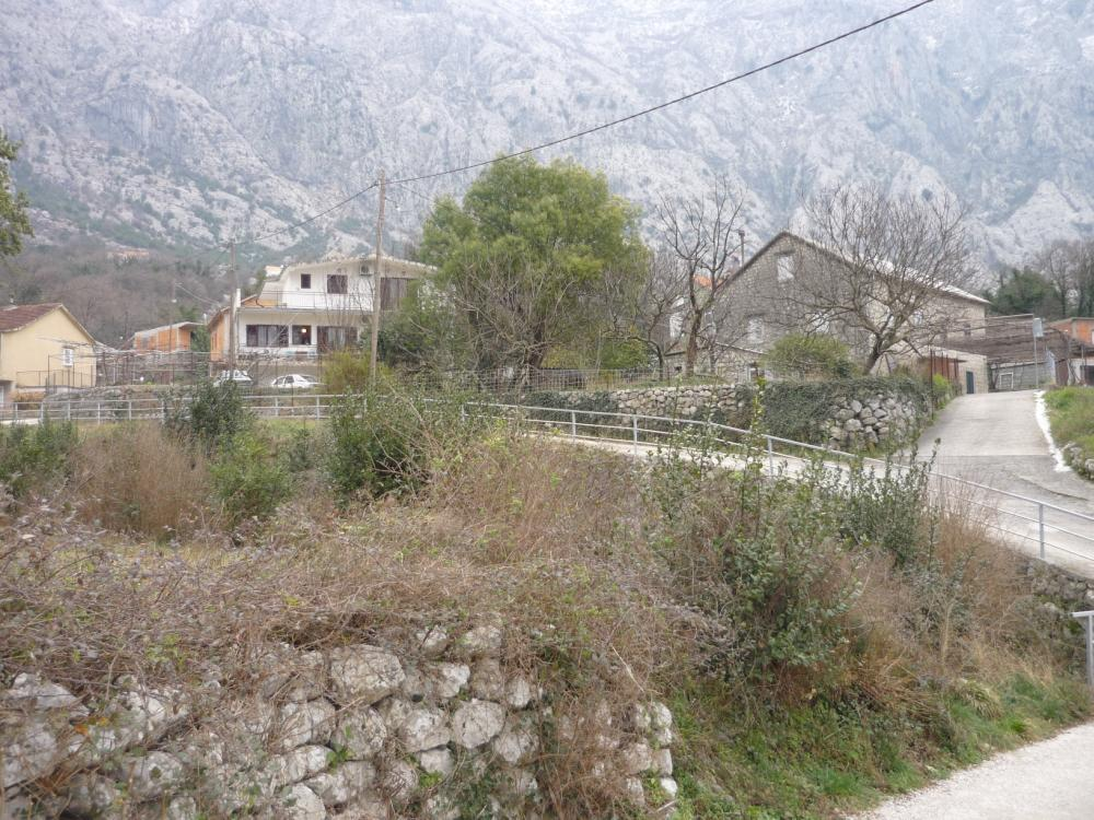 Черногория недвижимость цены стоимость